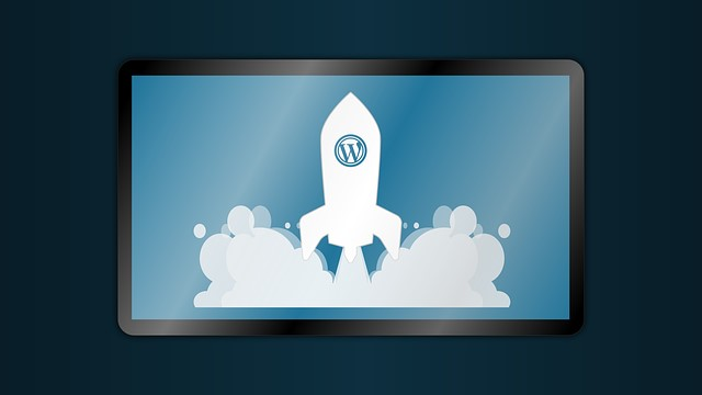 extension wordpress histoire