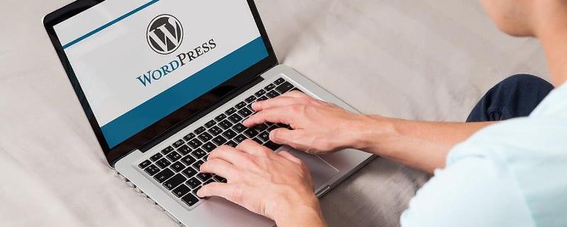 Revenir à une ancienne version de WordPress